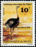 1981autruche