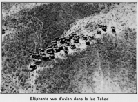 1937_avion03