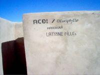 2006_latrines03